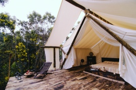 Superior Safari Tent